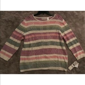 AlfredDunner Winter Garden Pastel Stripped Sweater
